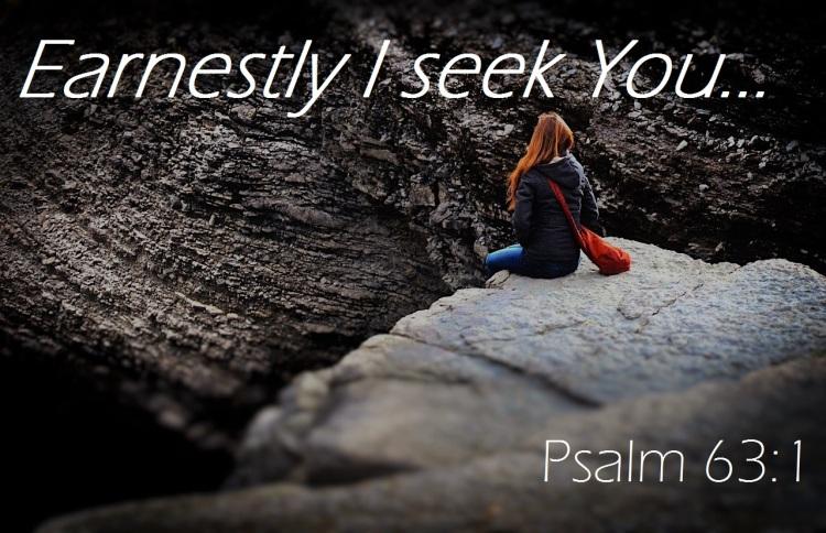 earnestly I seek you photo