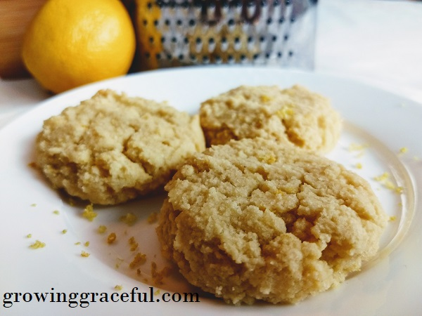 Lemon Breakfast Cookies, gluten-free, sourdough