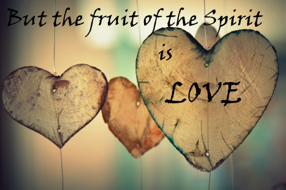 love fruit of the spirit photo